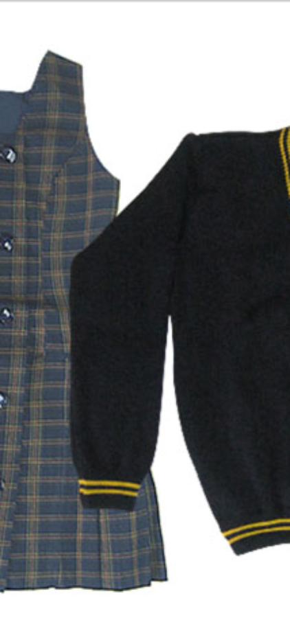liceo-miguel-rafael-prado-2-uniforme